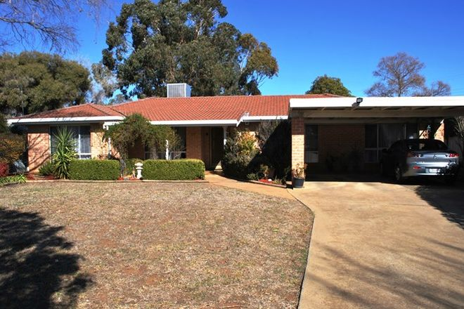 Picture of 13 Norfolk Crescent, DUBBO NSW 2830