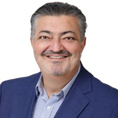 Theo Kouroulis, Sales representative