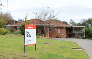 Picture of 24 Ballantine Street, Bairnsdale VIC 3875