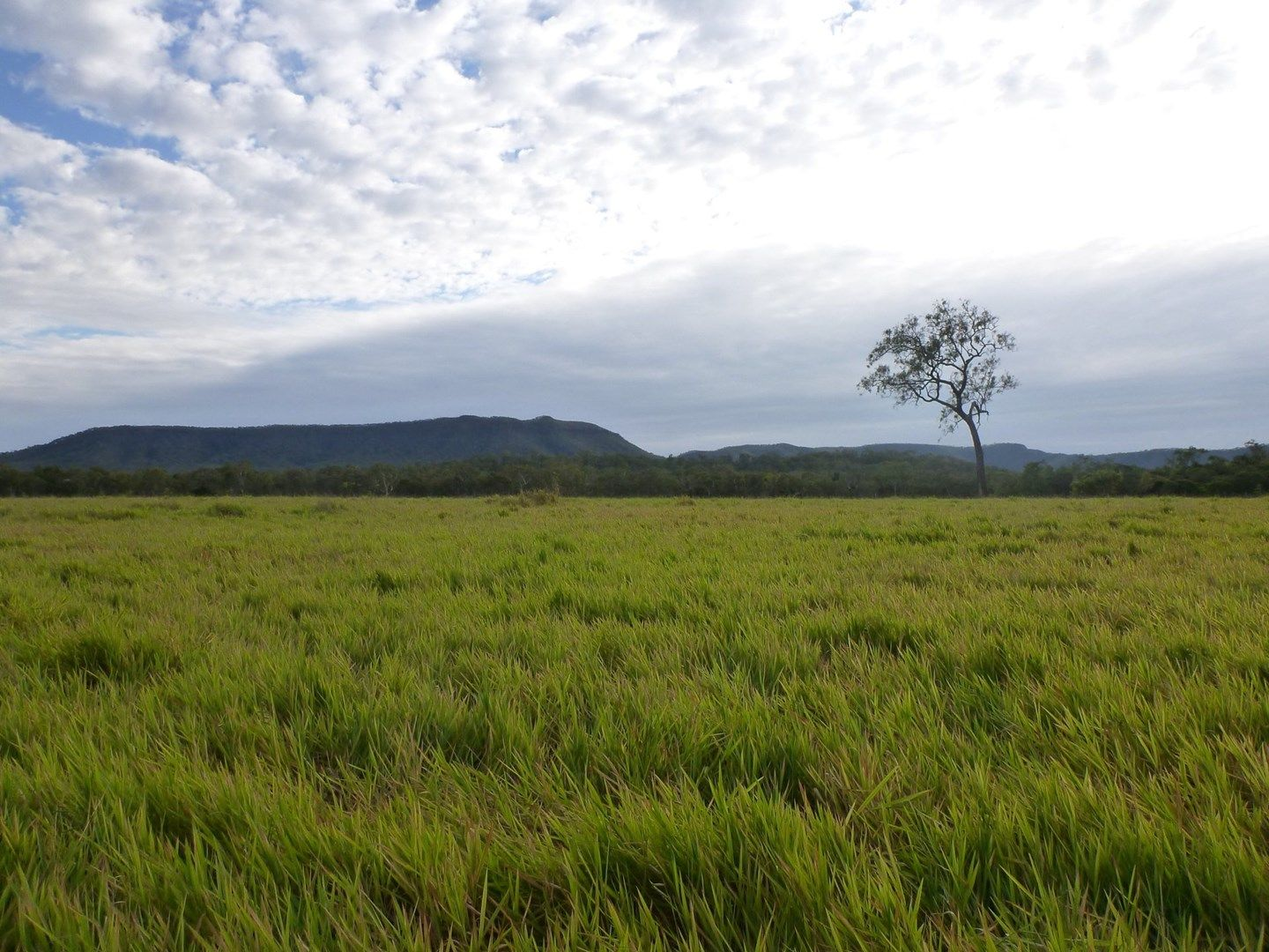 Cooktown QLD 4895, Image 0