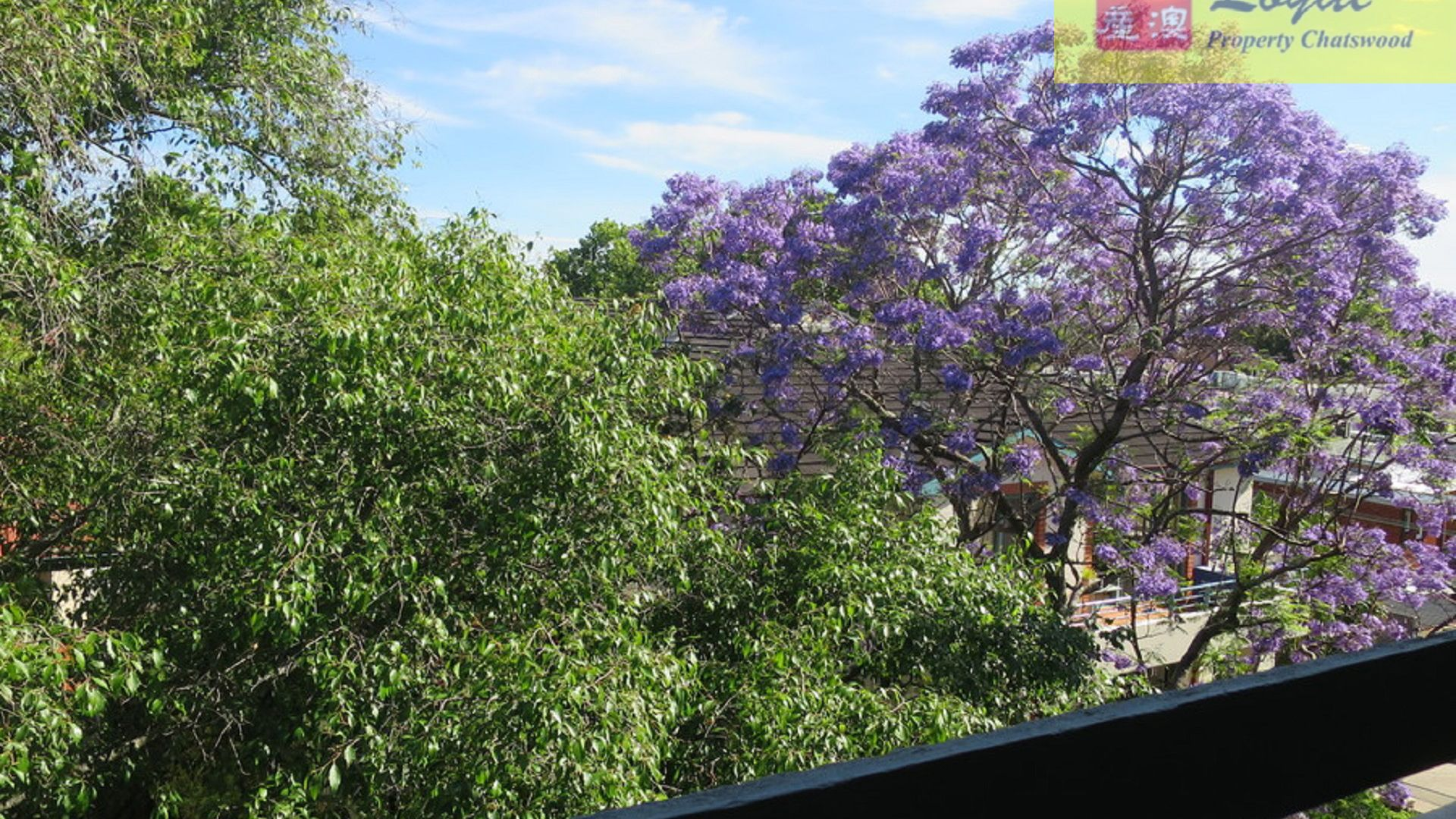 17/61-63 Hercules Street, Chatswood NSW 2067, Image 2