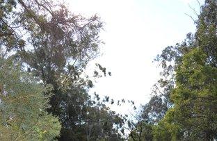 Picture of 246 Congewai Road, Congewai NSW 2325