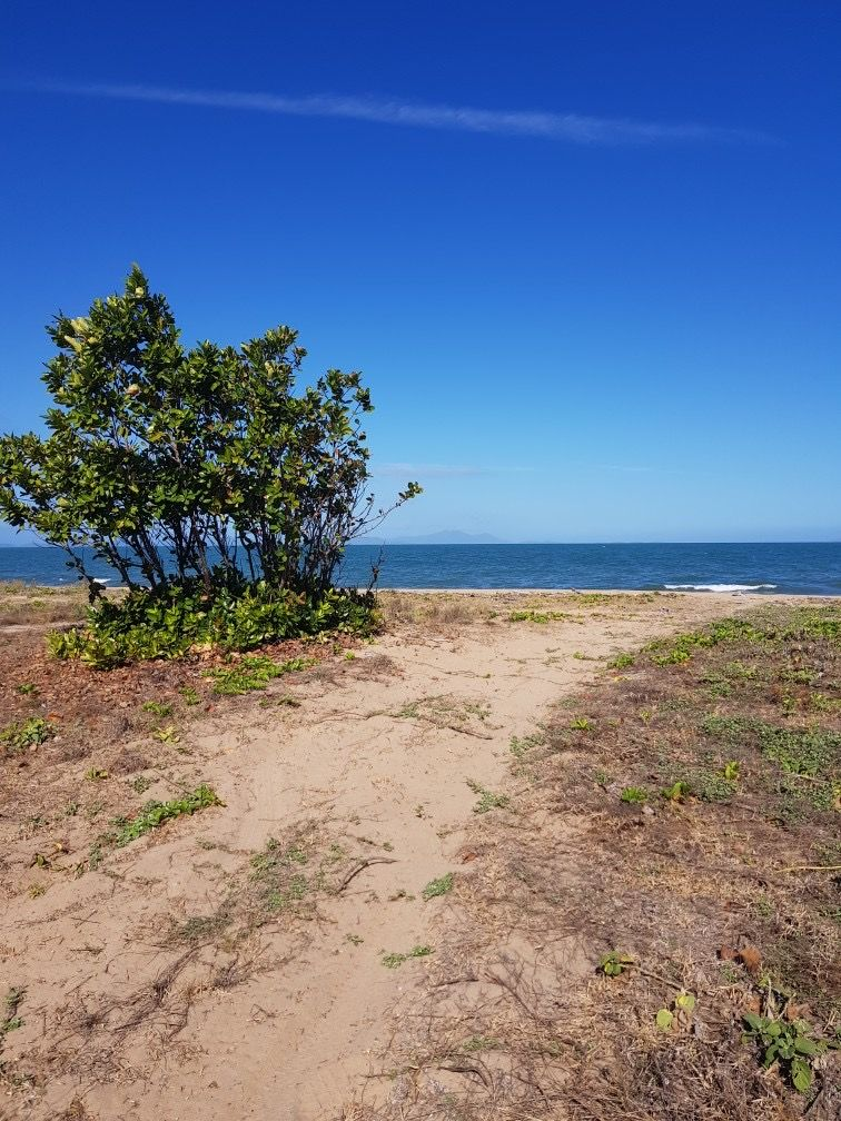 0 Poppis Road, Forrest Beach QLD 4850, Image 1