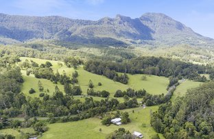 Picture of Mount Burrell NSW 2484