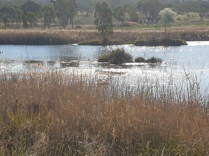Lot 1 New England Highway, Stanthorpe QLD 4380, Image 0