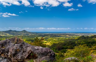 Picture of 731 Left Bank Road, Mullumbimby Creek NSW 2482