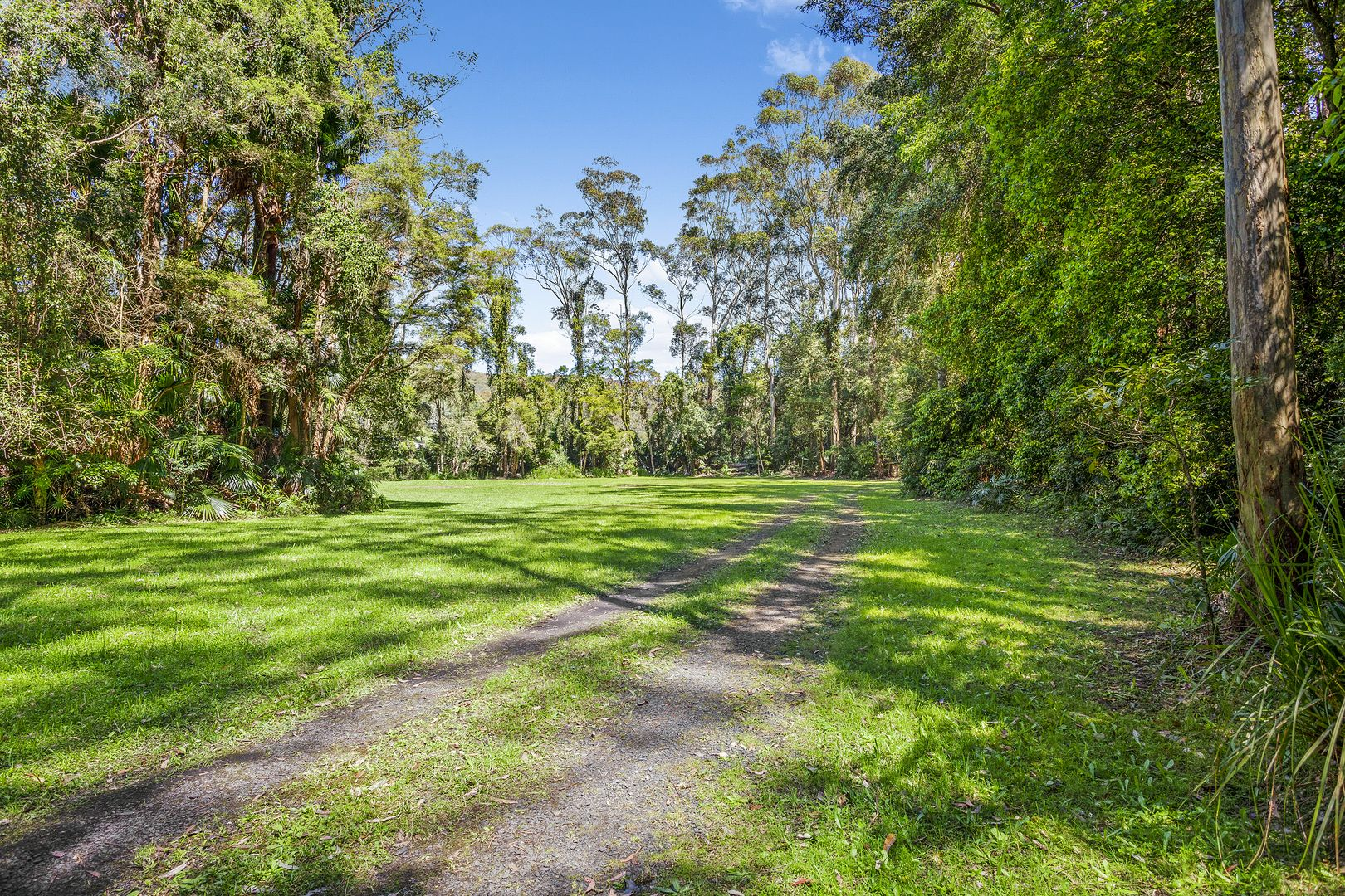 7 Corona Lane, Glenning Valley NSW 2261, Image 0