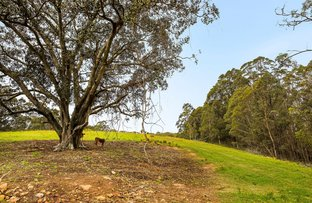 Picture of Lot 159-160/1036 Wollombi Road, Millfield NSW 2325