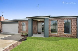 Picture of 37B Oxford Street, Whittington VIC 3219