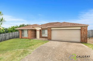 Picture of 12 Avalon Court, Ormeau QLD 4208