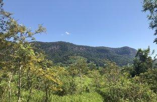 Picture of 3101 Nerang Murwillumbah Road , Natural Bridge QLD 4211