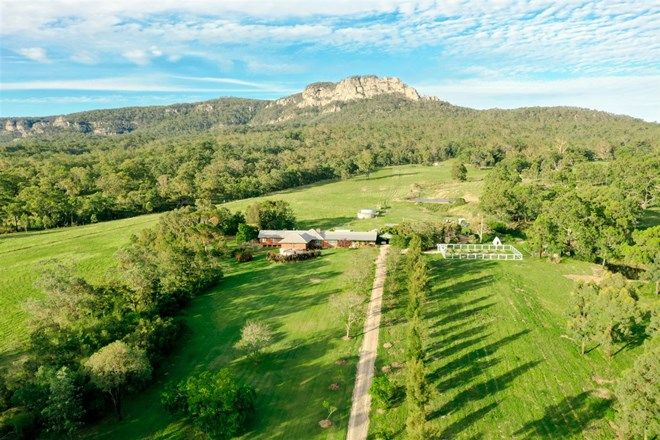 Picture of 'The Plantation' 198 Dry Creek Rd, SCONE NSW 2337