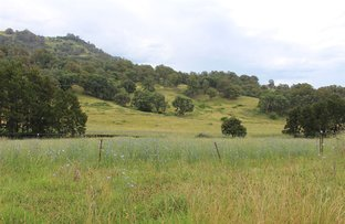 Picture of . Crawney Road, Crawney NSW 2338