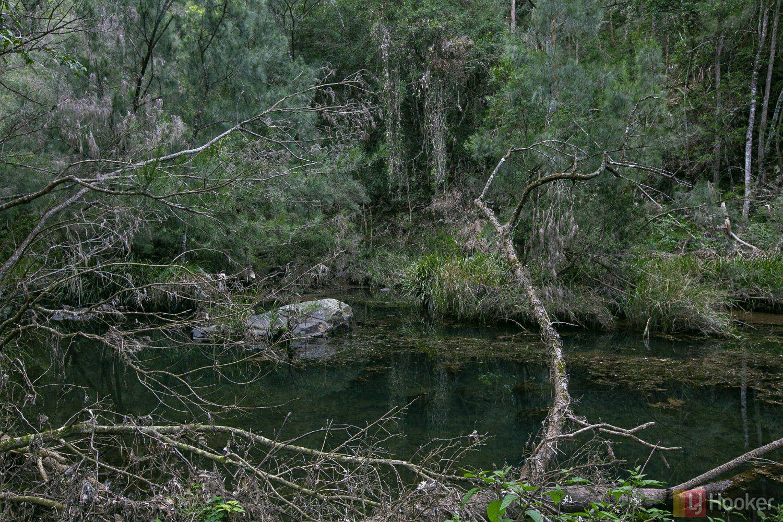 1100 Dungay Creek Road, Wittitrin NSW 2440, Image 0