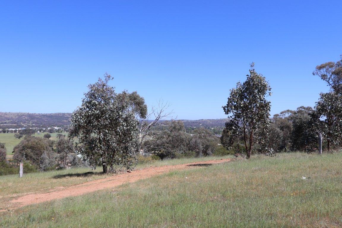 Lot 426 Pinkerton Road, Cootamundra NSW 2590, Image 1