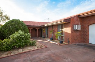 Picture of 7 Ibis St, Stirling WA 6021