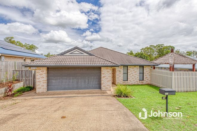 Picture of 56 Honeywood Drive, FERNVALE QLD 4306