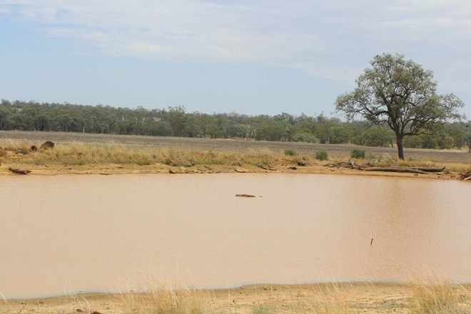 """Picture of """"Flaggy Creek"""", WARIALDA NSW 2402"""