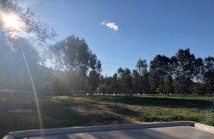 Picture of 22 Michaelis Court, Thurgoona NSW 2640