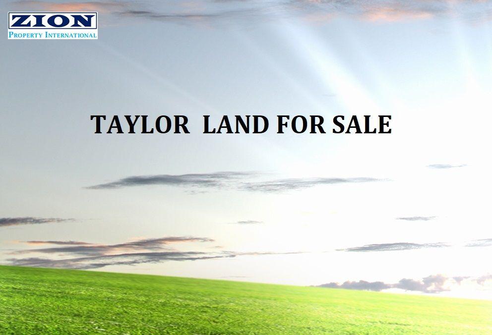Taylor ACT 2913, Image 0