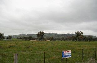Picture of lot 1 Faithfuls Creek Road, Euroa VIC 3666