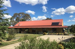 Picture of 1 Jamieson, Walcha NSW 2354