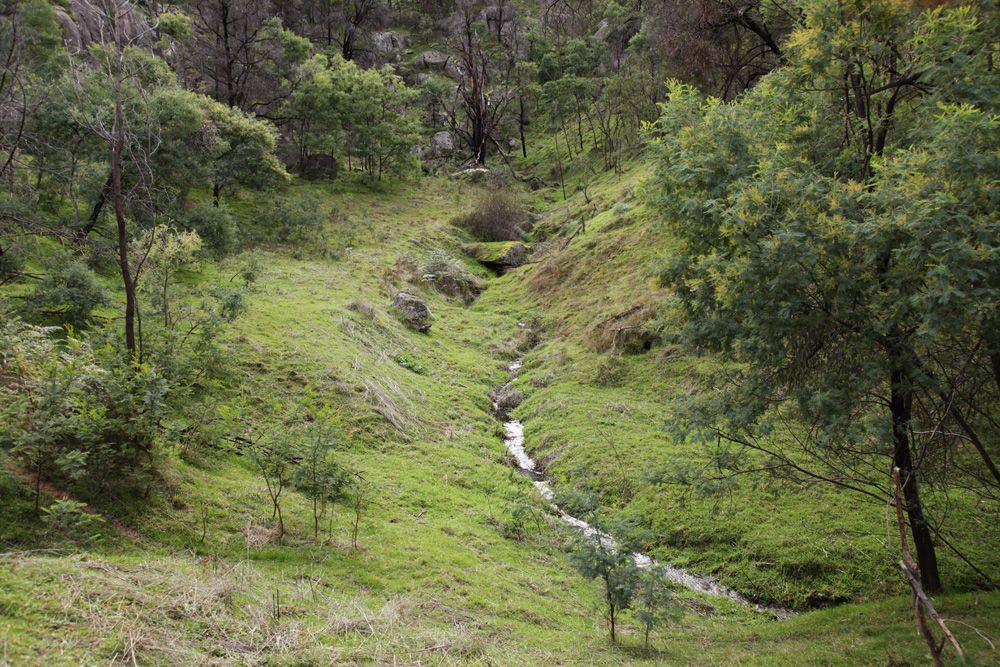 102 Mt Cecelia Road, Gooram VIC 3666, Image 1