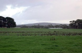 Picture of Lot 5 Portland - Nelson Road, Gorae West VIC 3305