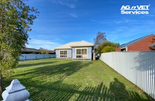 Picture of 72 Munro, Culcairn NSW 2660