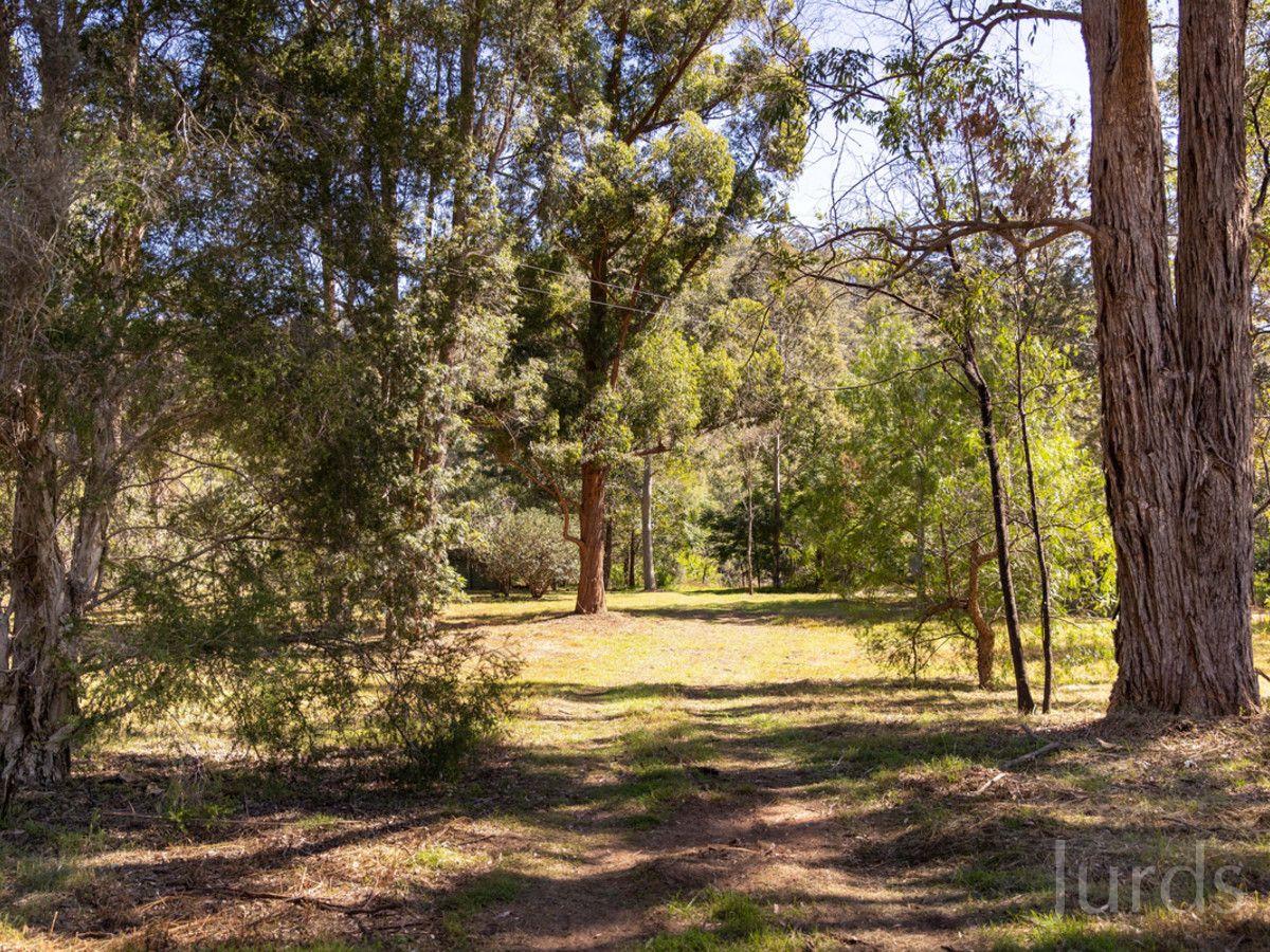 1190 Wollombi Road, Broke NSW 2330, Image 2