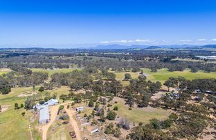 Picture of 154 Wattle Gully Road, Great Western VIC 3374