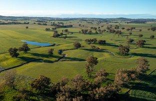 Picture of 1679 Stockinbingal Road, Cootamundra NSW 2590