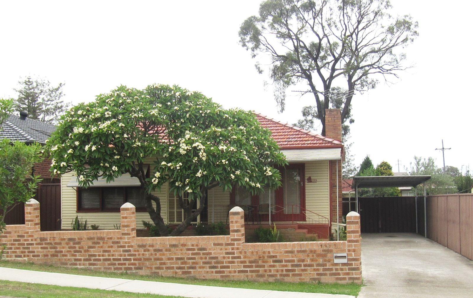 125 Brenan Street, Smithfield NSW 2164, Image 0