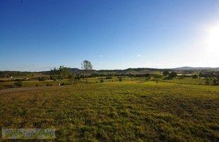 Picture of Lot 11 Cnr Biddaddaba Creek Rd & Beaudesert Nerang Road, Boyland QLD 4275