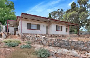 Picture of 29 High Street, Gawler East SA 5118