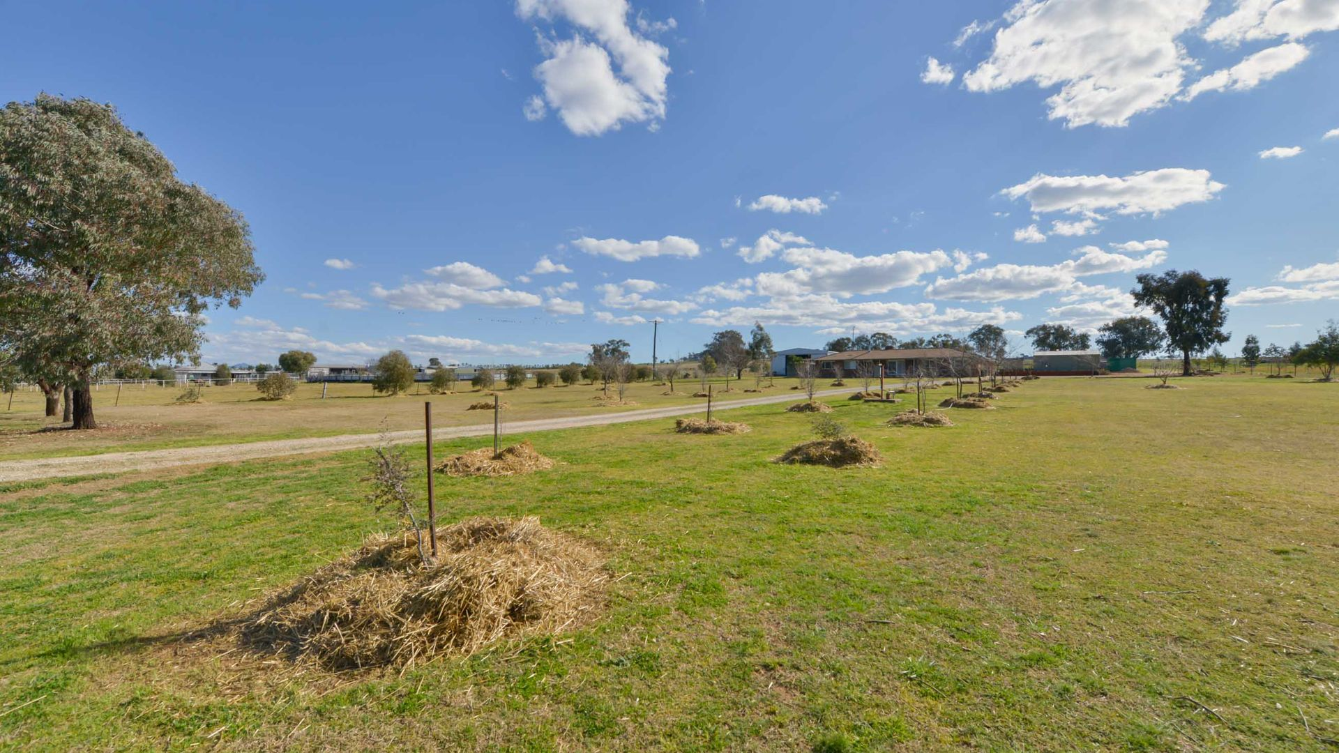 1009 Wallamore Road, Tamworth NSW 2340, Image 2