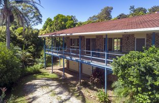 Picture of 16 Valley View Drive, Bellingen NSW 2454