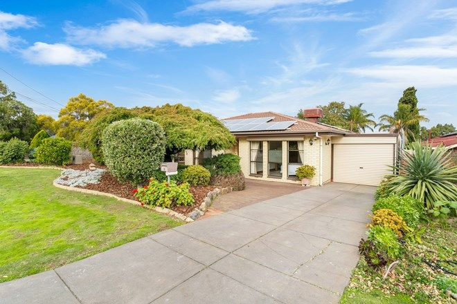 Picture of 7 Terrigal Road, REDWOOD PARK SA 5097