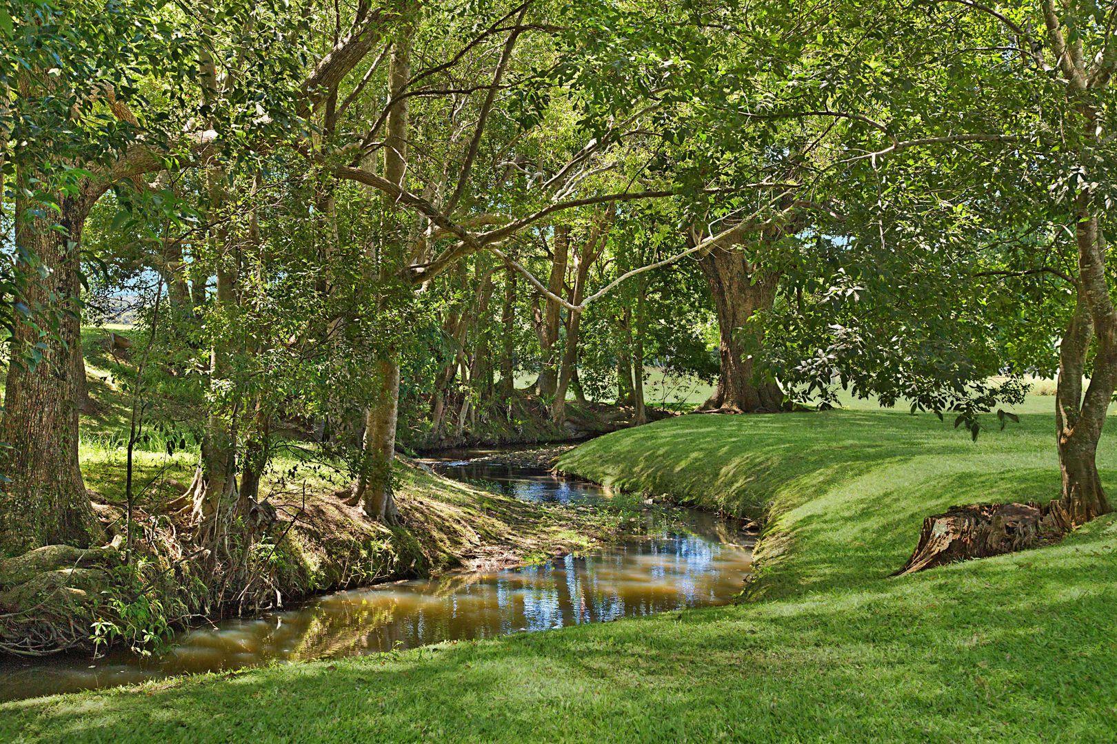 675 Clothiers Creek Road, Clothiers Creek NSW 2484, Image 0