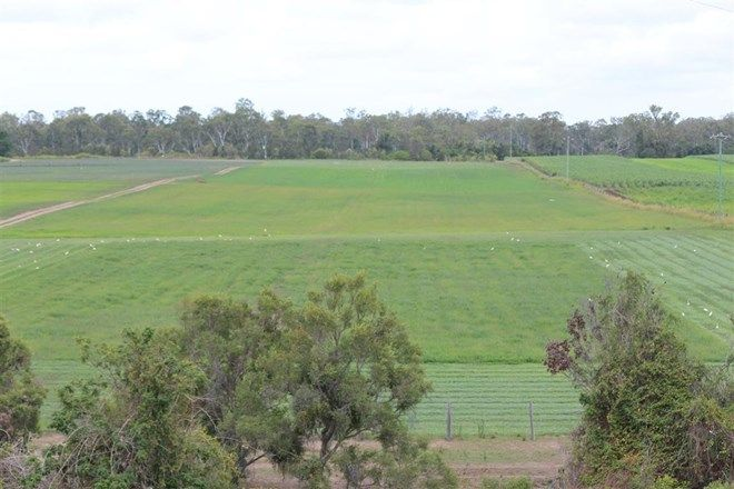 Picture of AVONDALE QLD 4670