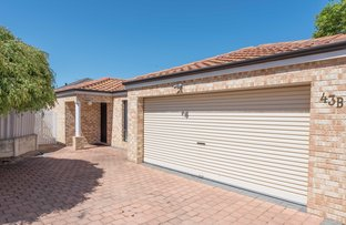 Picture of 43B Hillsborough Drive, Nollamara WA 6061