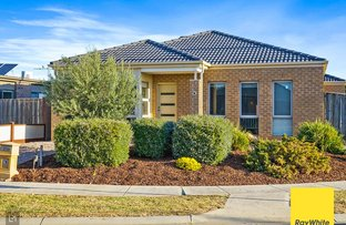 Picture of 7 Tavor Street, Tarneit VIC 3029