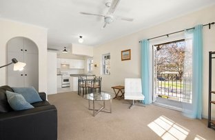 Picture of 8/128 Osmond Terrace, Norwood SA 5067