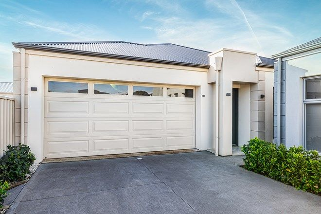 Picture of 20B Parsons Grove, PARK HOLME SA 5043