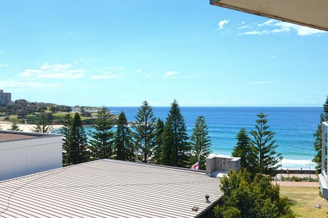 Picture of 6/236 Arden Street, COOGEE NSW 2034