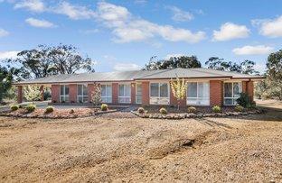 Picture of 145 Junortoun Road, Strathfieldsaye VIC 3551