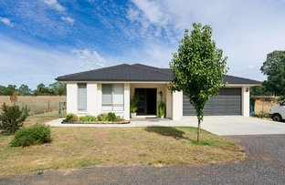 Picture of 12 Panmure Street, Newstead VIC 3462
