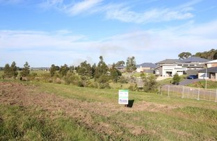 Picture of Lot 401 Warden Close, Bolwarra Heights NSW 2320