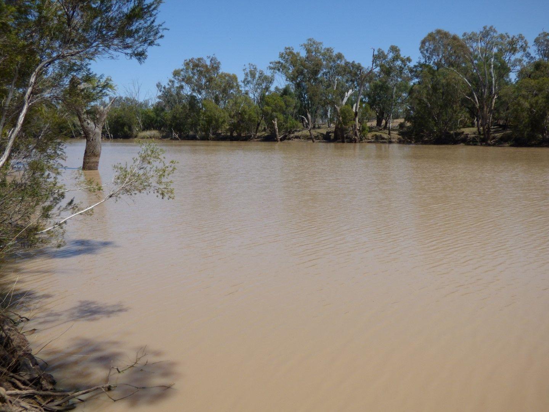 12733 Carnarvon Highway, St George QLD 4487, Image 2