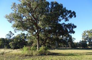 Thanes Creek Road, Thanes Creek QLD 4370